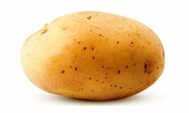 We zijn nog niet aan de nieuw patatten